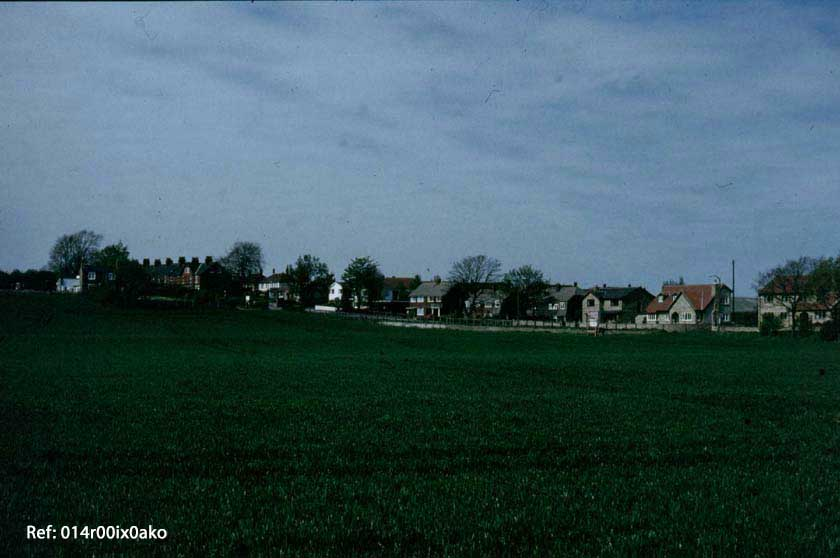 Woodrow Hill
