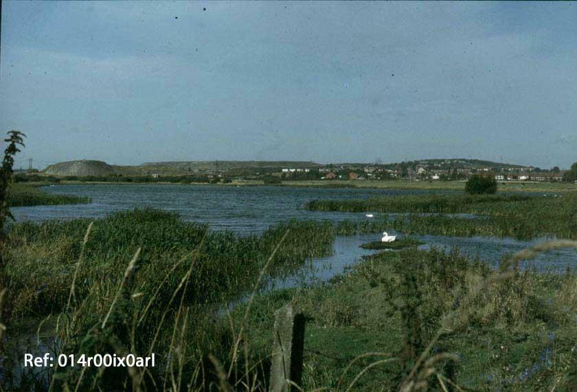 Boat Lane Ings, 1980