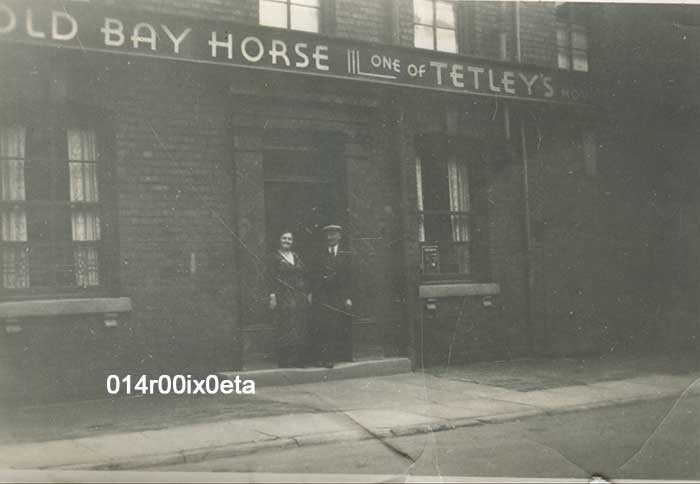 old bay horse methley